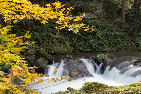 荒俣峡の紅葉