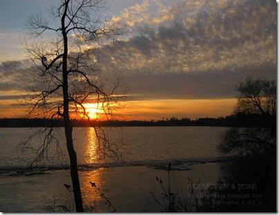13010302musselmans-lake72