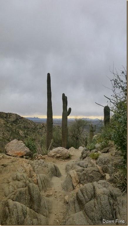 Romero pools hike_074