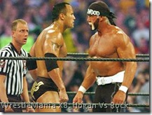 WM X8 Hogan vs Rock