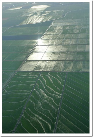 110627_flying_ricefields3