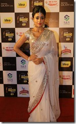 Shriya Saran @ Mirchi Music Awards 2013 (South) Red Carpet Photos