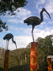 Aug 20 - Stork Sculptures