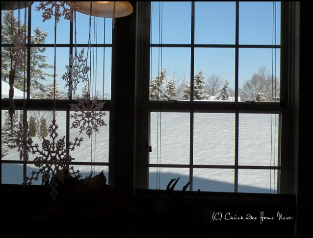 Snow, Winter Wonderland (31)