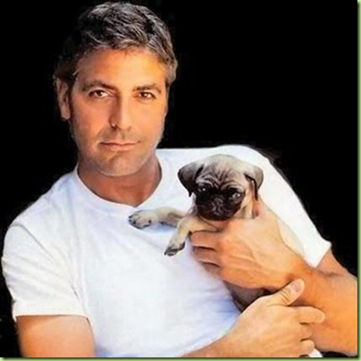 george_clooney_puppy_dog-copy