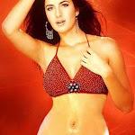 Sexy-Katrina-Kaif-Photos-28.jpg