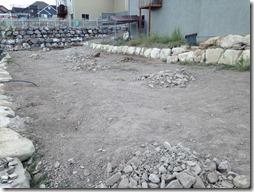 Backyard (4)