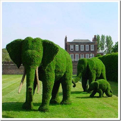 elephanttopiary12
