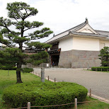 shizuoka in Shizuoka, Sizuoka (Shizuoka) , Japan
