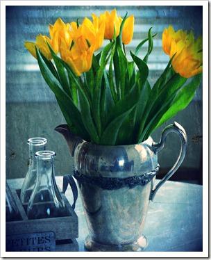 metal tulip pic