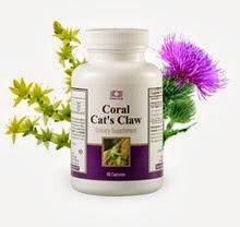 Корал котешки нокът / Coral Cat's Claw
