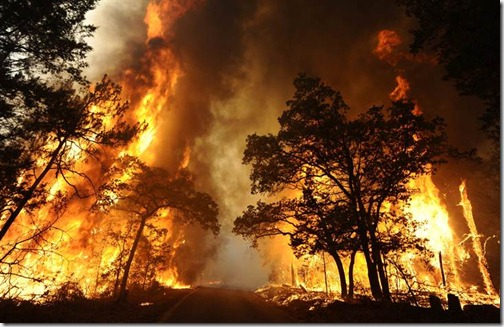 A wildfire burns out of control in Bastrop State Park near Bastrop on Sept. 5. (Larry W. Smith / EPA)