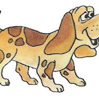 cachorro colorido.jpg