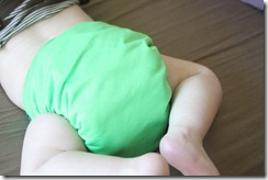 Softbums Omni Cloth Diaper On Baby - Rear View