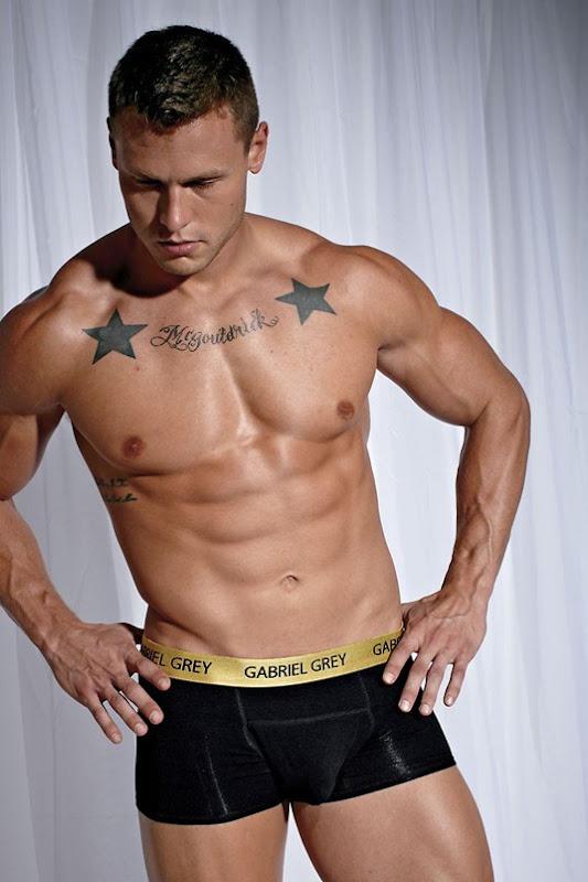 Model for Gabriel Grey