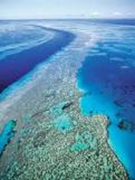 Gt. Barrier Reef