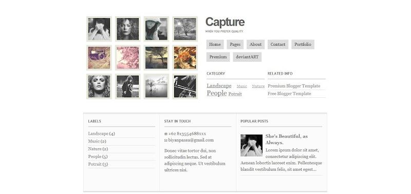 premium-blogger-templates (22)
