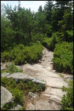Gorham Mountain Hike 095