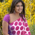 Nayanthara-Hot-Photos-41.jpg