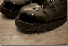 Polished Shoes Sepia