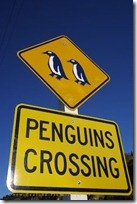 penguins-crossing-sign_2509
