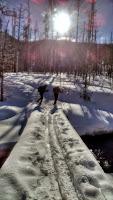 Specimen Creek 01-15 Photo