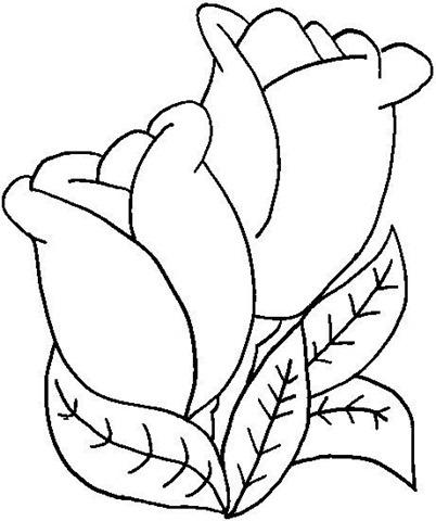 Moldes e desenhos de Tulipas