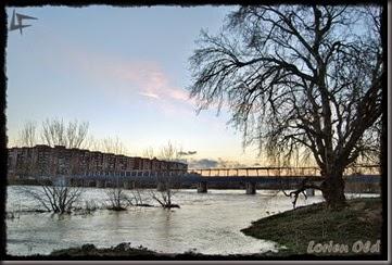 Ebro 201502 (9)