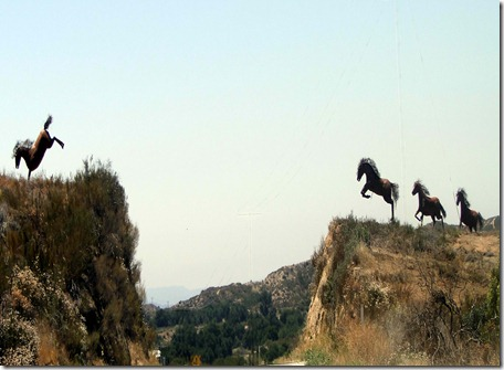 horses 009-001