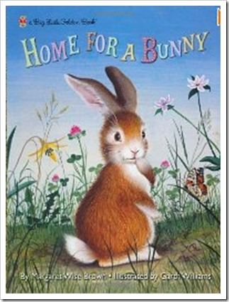 home for a bunny