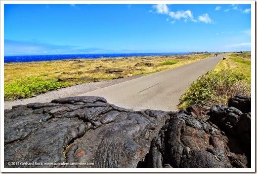 140724_HawaiiVolcanoesNP_0125