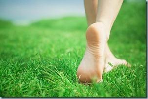 pies-en-la-hierba