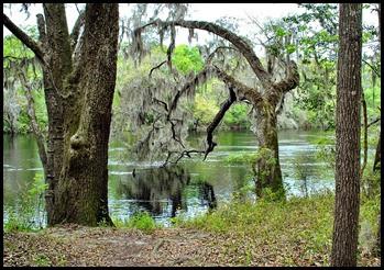 00a - Suwannee River