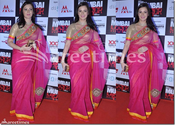 Urvashi_Sharma_Pink_Net_Saree