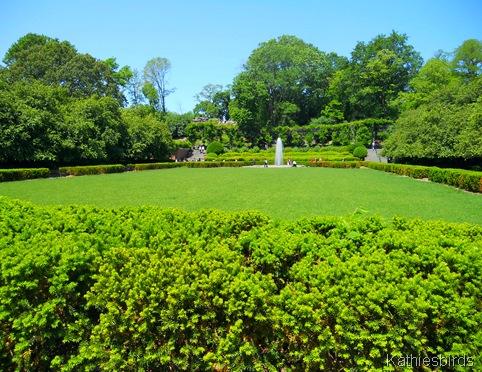 15. conservancy lawn-DSCN1247