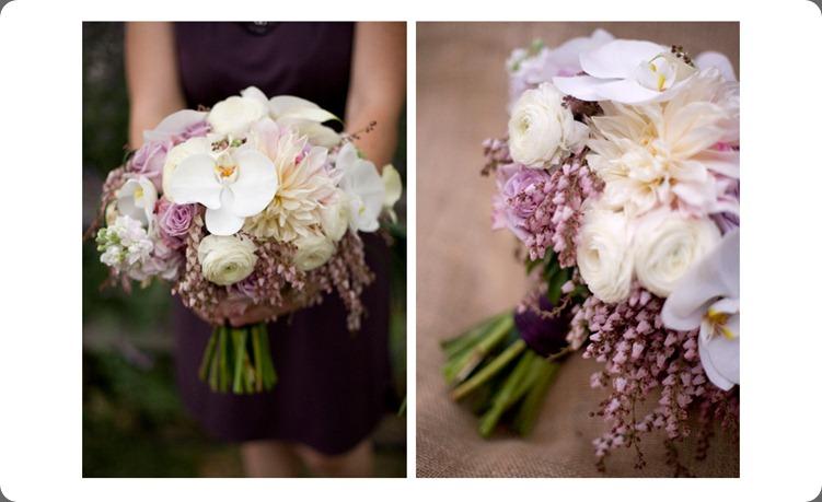 masthead_image2_1345149834 petal pixie