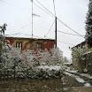 2013-sotosalbos-nieve10.jpg