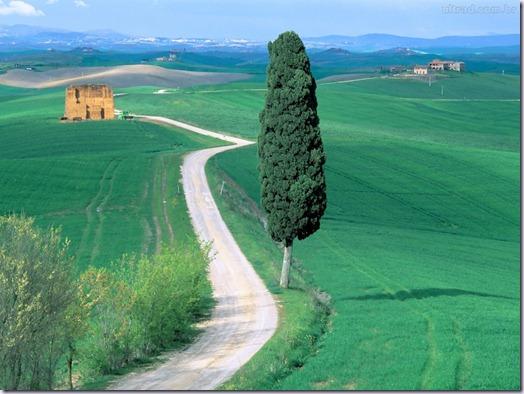 rodovia-do-campo-toscana-italia_vinhoedelicias