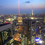 gorgeous night view of Tokyo in Shinagawa, Tokyo, Japan