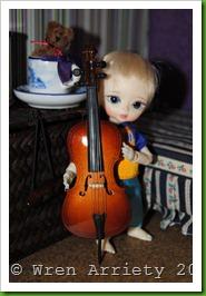 tn_2012-02-06 Wren (9)