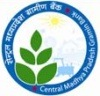 Central Madhya Pradesh Gramin Bank recruitment,Central Madhya Pradesh Gramin Bank RRB recruitment 2013,RRB recruitments 2013