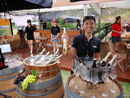 31. Prezentare vin Thailanda.JPG