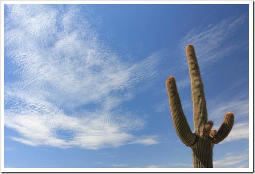 120727_Phoenix-AZ_004