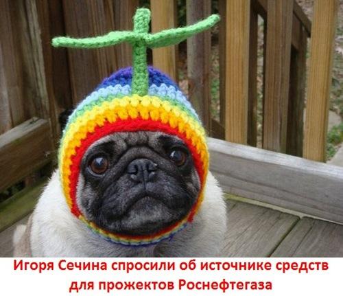 Игоря Сечина спросили об источнике средств для прожектов Роснефтегаза