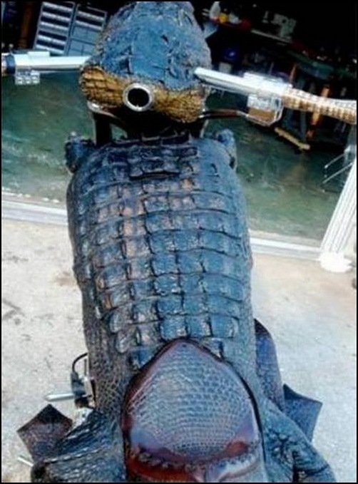 Alligator-Bike-croc_bike_04
