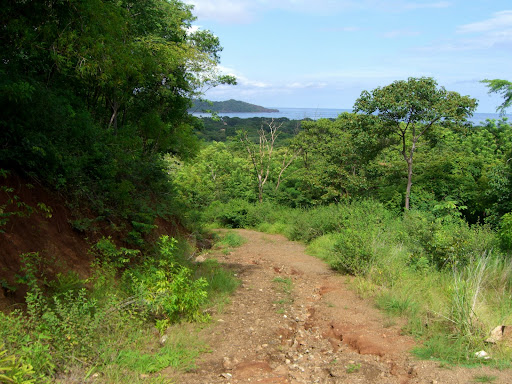 Costa Rica - Playa Flamingo & Playa Brasilito Cycling - The amazingly bad dirt road I attempted to cycle up - Scenic though!