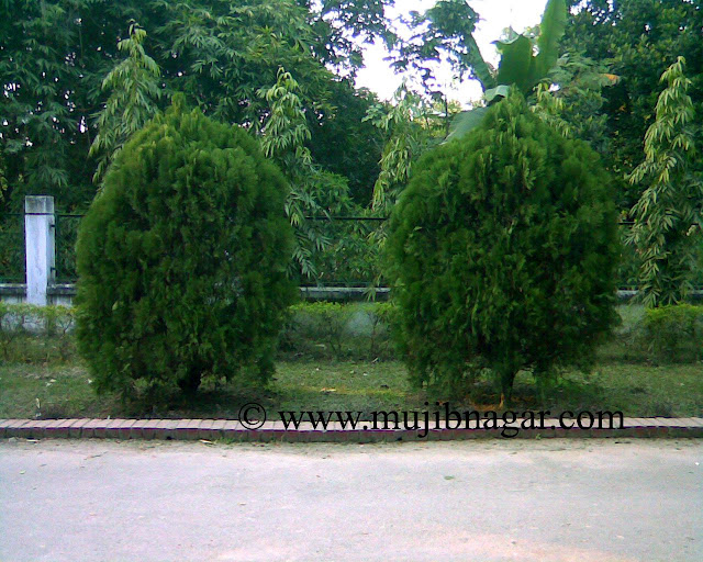 Mujibnagar-Memorial-Monument-Road-Gerden.jpg