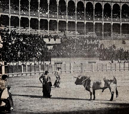 1903-03-15 (p. 19 SyS) Mazzantinito toro 2 Coruche 001