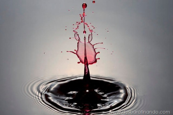 liquid-drop-art-gotas-caindo-foto-velocidade-hora-certa-desbaratinando (53)