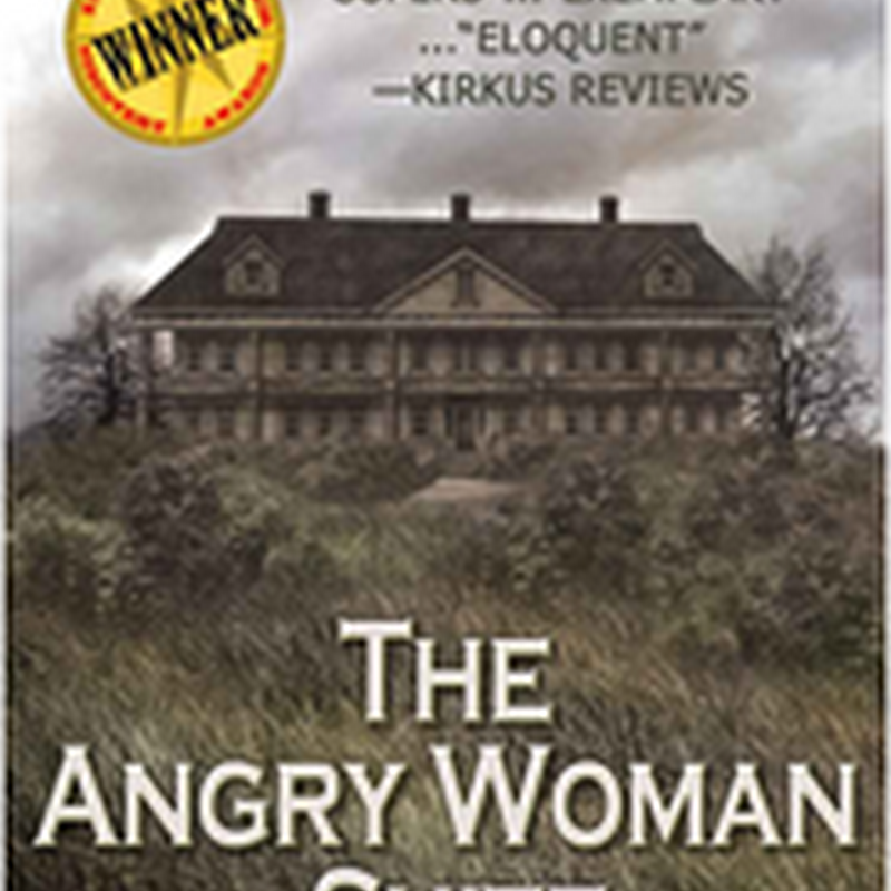 Orangeberry Book of the Day - The Angry Women Suite - Lee Fullbright